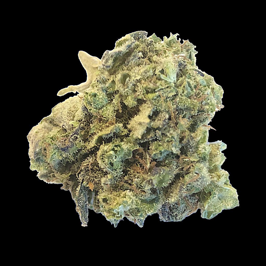 Lemon Sphinx