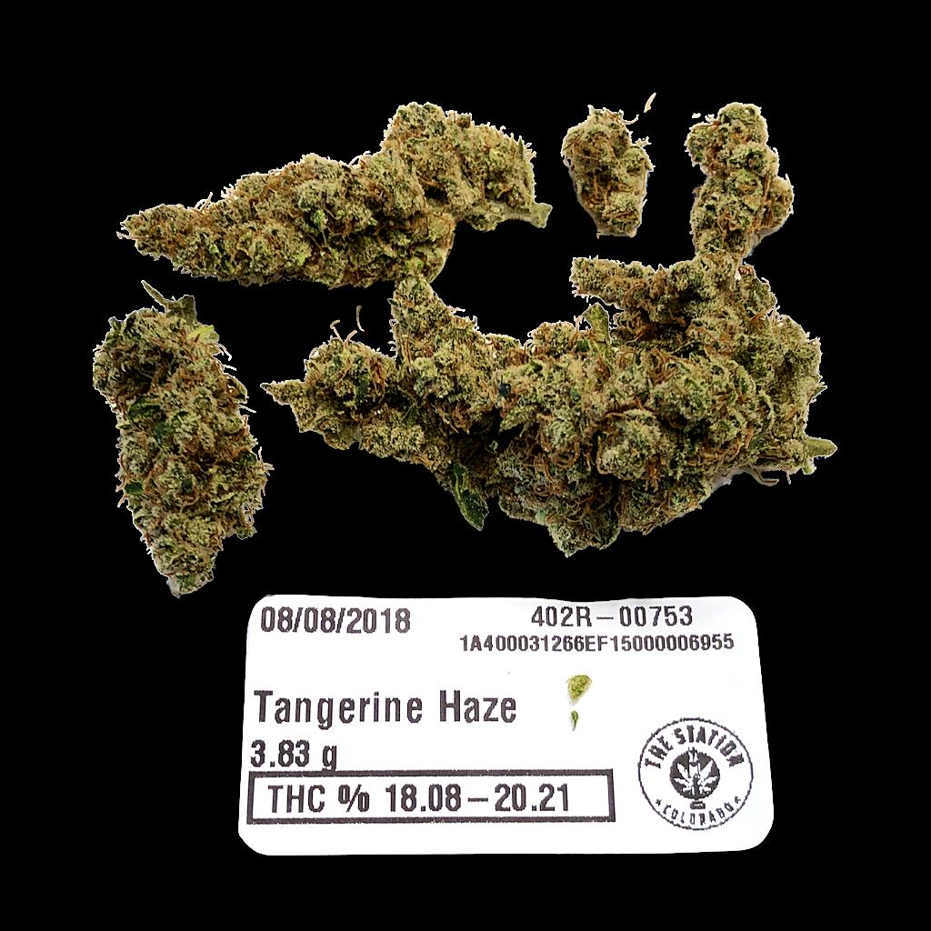 Tangerine Haze